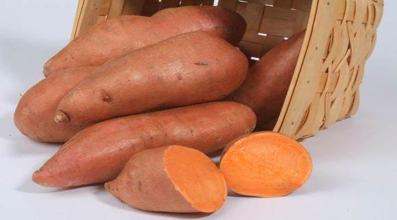 slatki-krompir-batat
