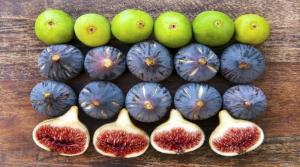 SMOKVA, Fructus Caricae, Figa, crna smokva, petrovka, Ficus carica